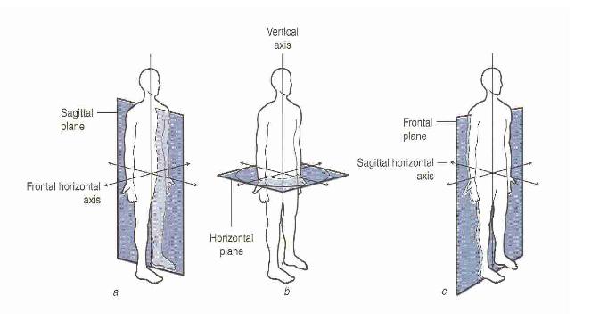 Transverse Lunge w/Overhead Press   BIOMechaniks