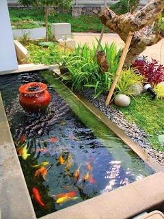 Model Kolam Ikan Minimalis Desain Terbaru