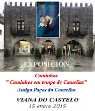 Exposición en Viana