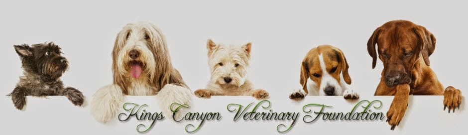 Kings Canyon Veterinary Foundation