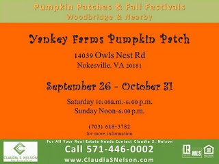 Pumpkin Patches near Woodbridge Virginia 2015 Yankey Farms Nokesville Virginia Owls Nest