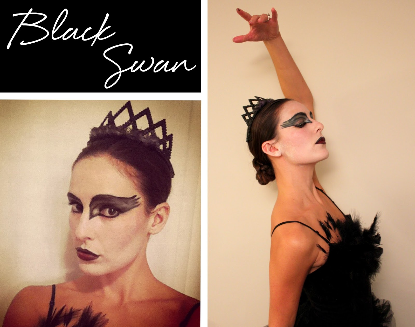 Diy Halloween Costumes Black Swan Diy Halloween Costume