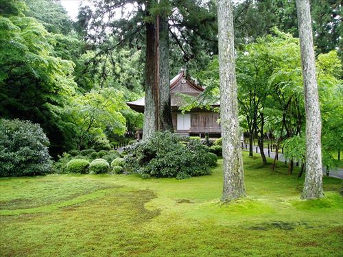 京都市左京区|三千院(さんぜんいん)