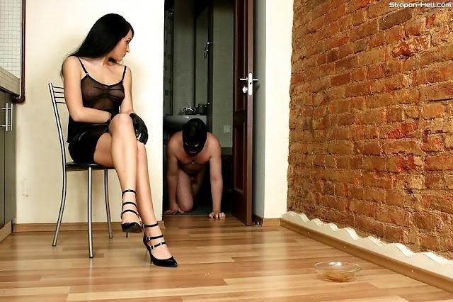 slave caged mistress bowl goddess all four dog crawl
