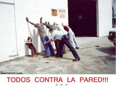 foto narrativa, perros, policía, delincuencia, humor