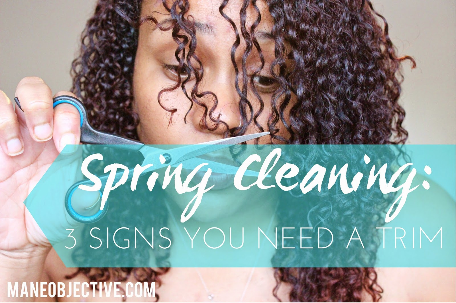 Spring Cleaning: 3 Signs You Need a Trim this Season