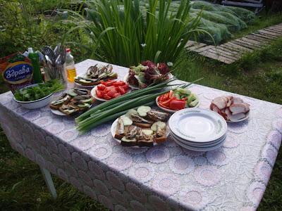 Дача, лук, зелень, обед на открытом воздухе, лето, Северодвинск, 2012