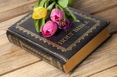 Imágenes Gratis de la Sagrada Biblia y Tulipanes