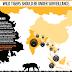 WWF Desak Pemerintah Perbaiki Habitat Harimau