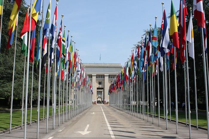 PBB perserikatan bangsa-bangsa di jenewa