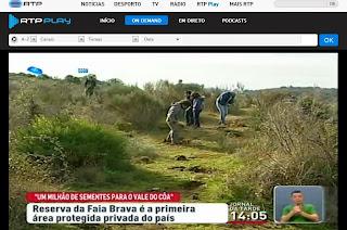 http://www.rtp.pt/play/p35/e135539/jornal-da-tarde/326827