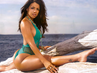 Sexiest Ass Model Vida Guerra 2011 Bikini Photo HD Wallpaper Collection