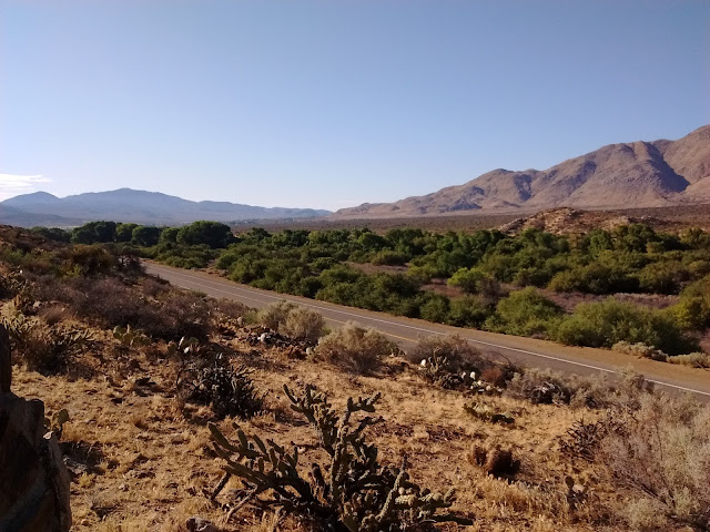 Looking Southeast along San Felipe Creek