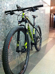 Specialized Stump Jumper 29er
