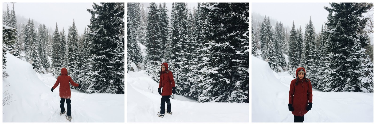 Rocky Mountain Snowshoeing Trails