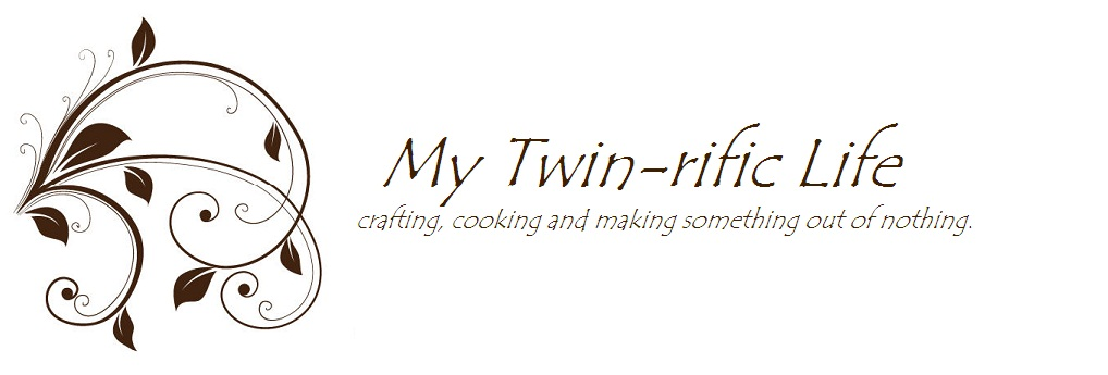 My Twin-rific life!