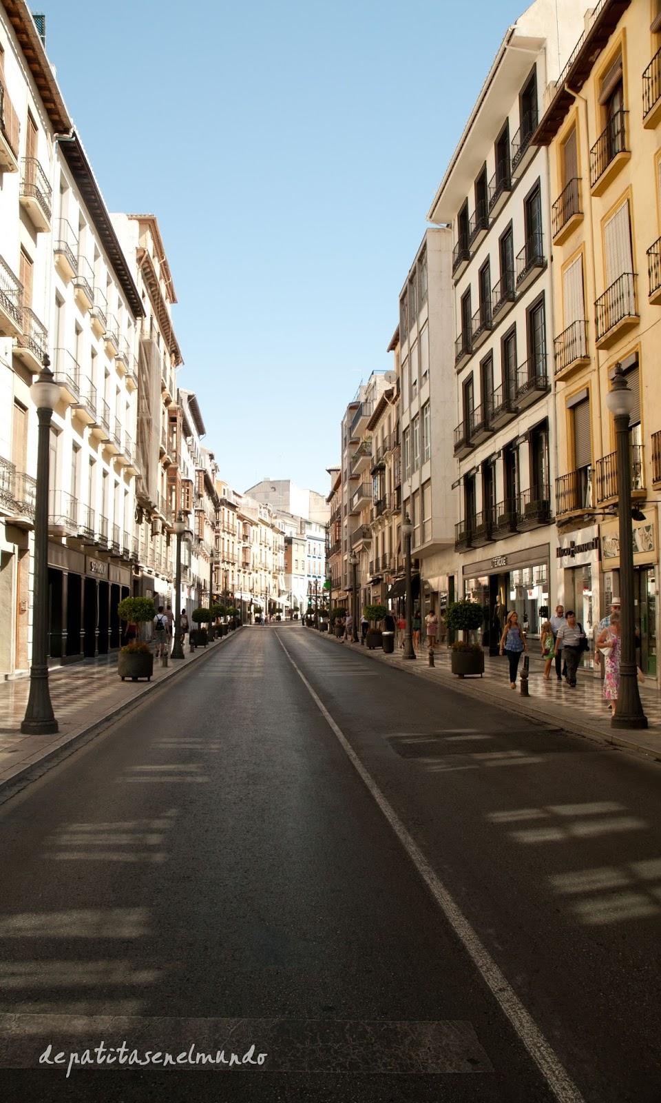 Calle Reyes Catolicos de Granada