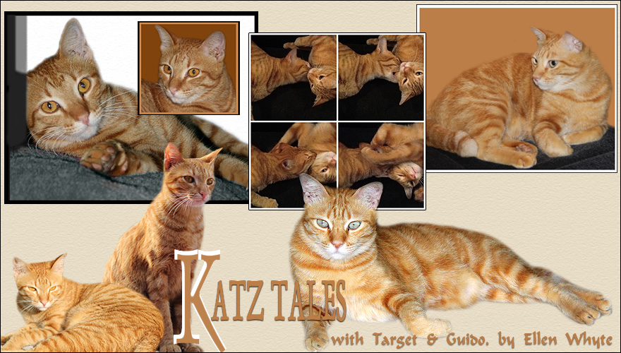 Katz And Other Tales