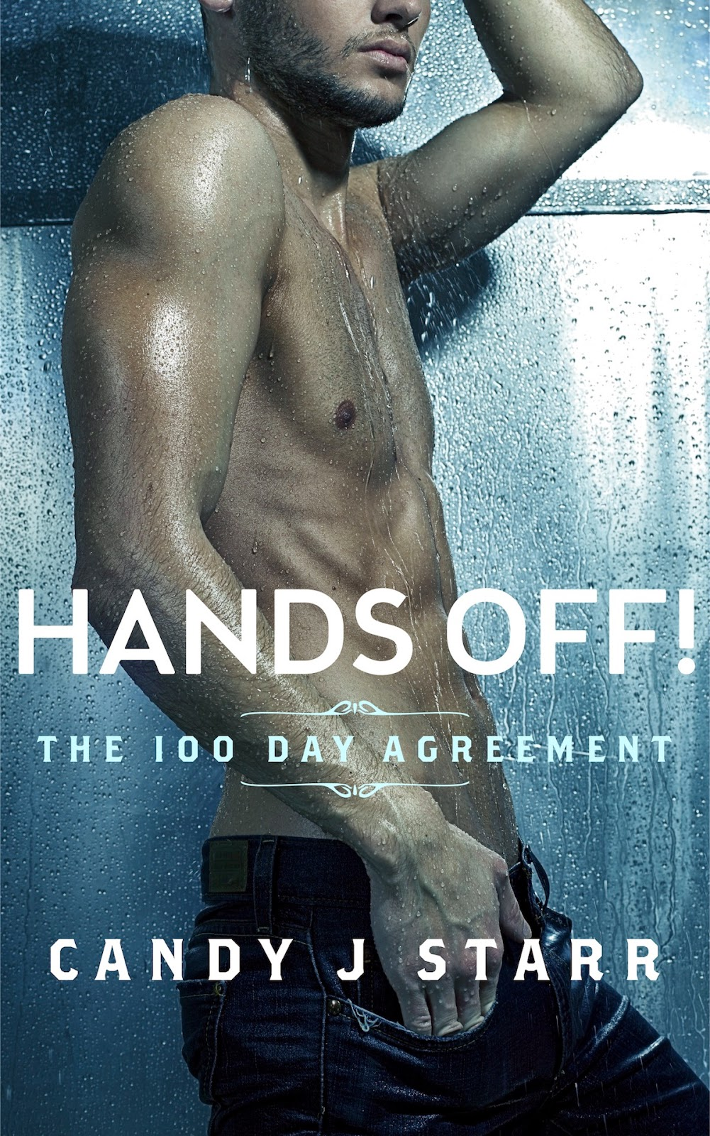 Hands Off! The 100 Day Agreement by Candy J. Starr