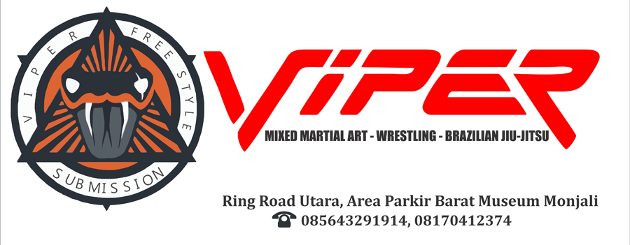 Synergy Viper MMA Yogyakarta