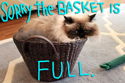 basket-full-01