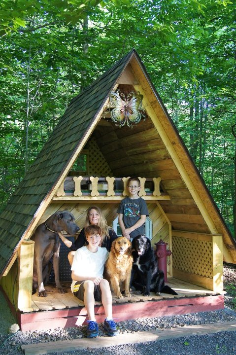 Image Result For Plans To Build A Dog House