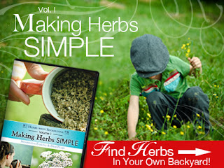 making herbs simple bulk herb store review