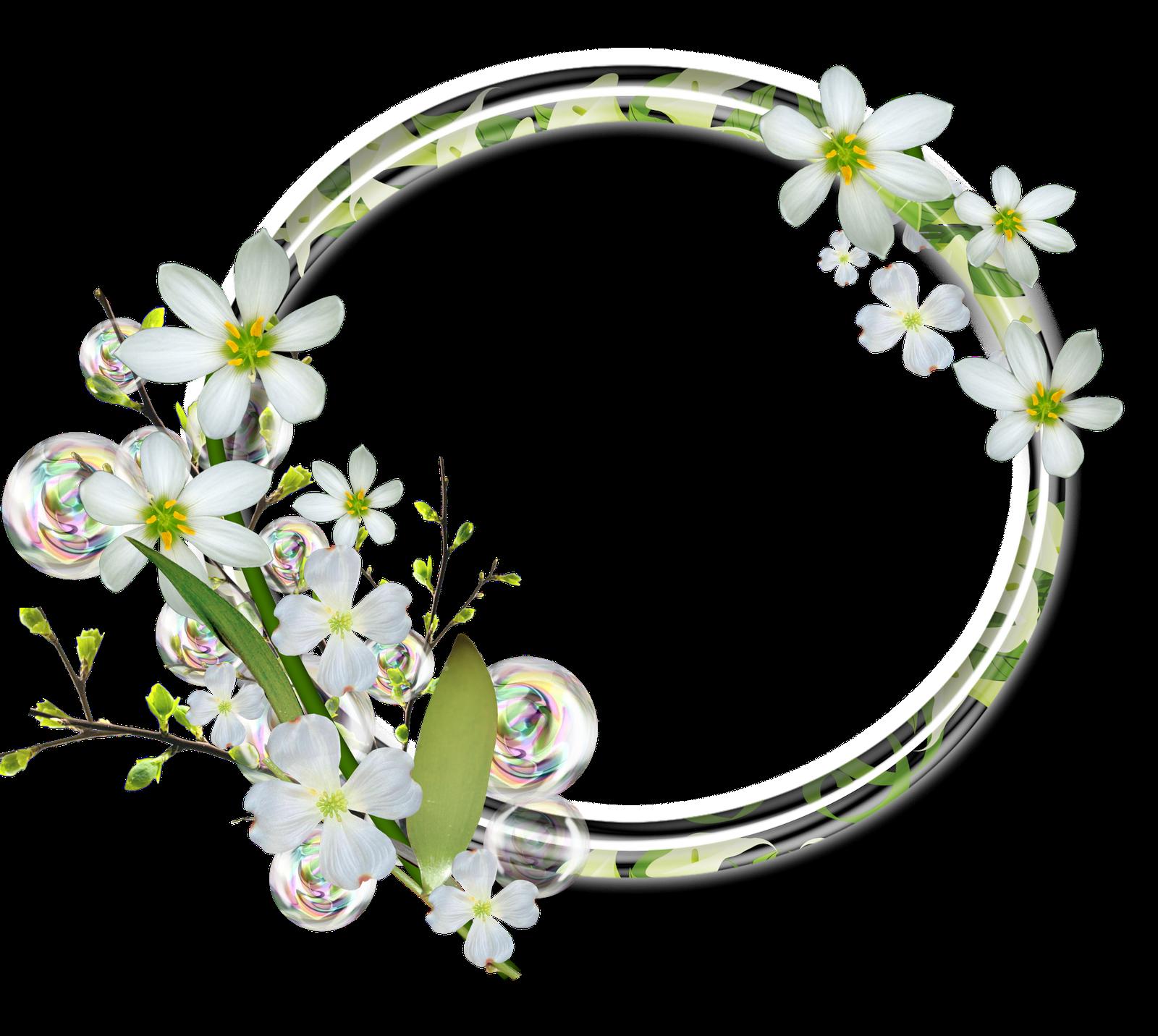 Marcos gratis para fotos marcos florales para fotos - Marcos redondos para cuadros ...