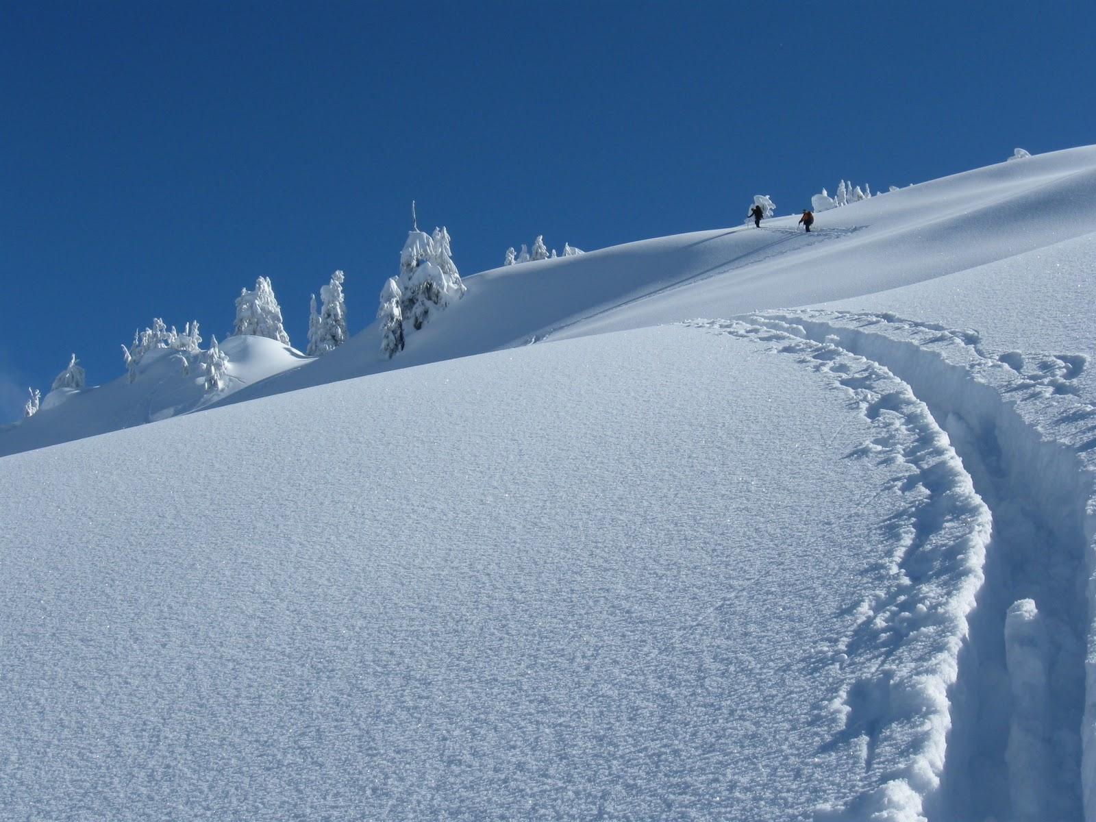 cima mountaineering inc