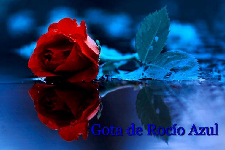 Gota de Rocío Azul