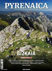 Pyrenaica 271