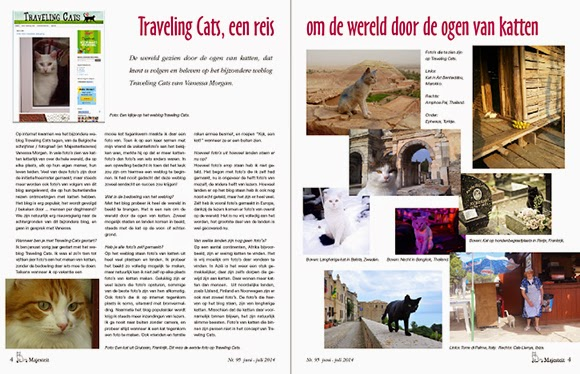 Majesteit Katten Magazine