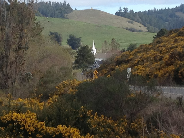 The historical church steeple can be seen from the cemetery where weddings