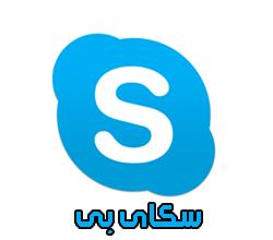 تحميل برنامج سكاى بى Skype 2014 للكمبيوتر
