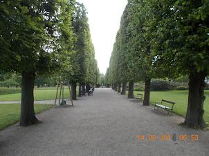 Kings Garden in Copenhagen