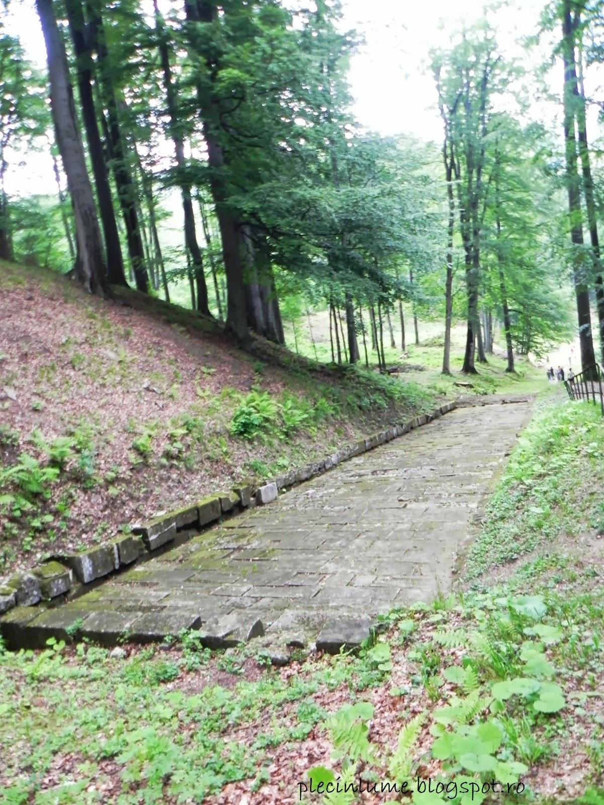 Drum pavat la Sarmizegetusa Regia