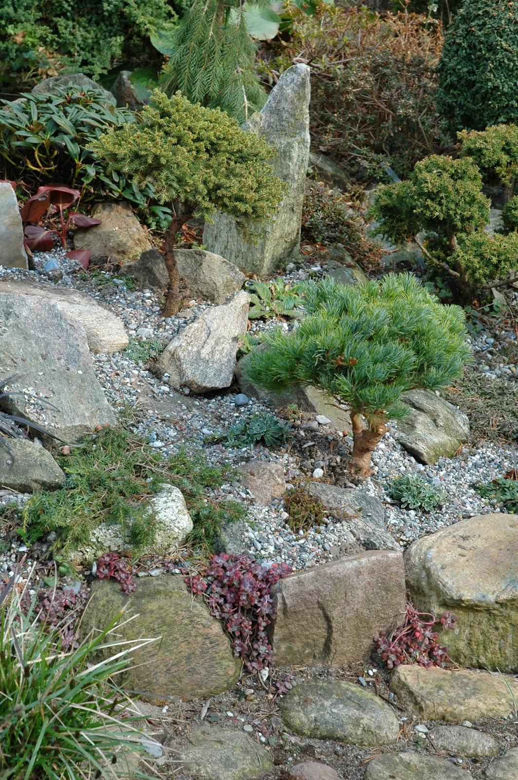 HAVETID: Granitsten mellem havens planter.