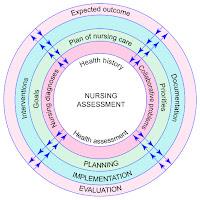 nursing process