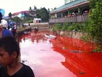 Video Air Sungai Bertukar Menjadi Merah