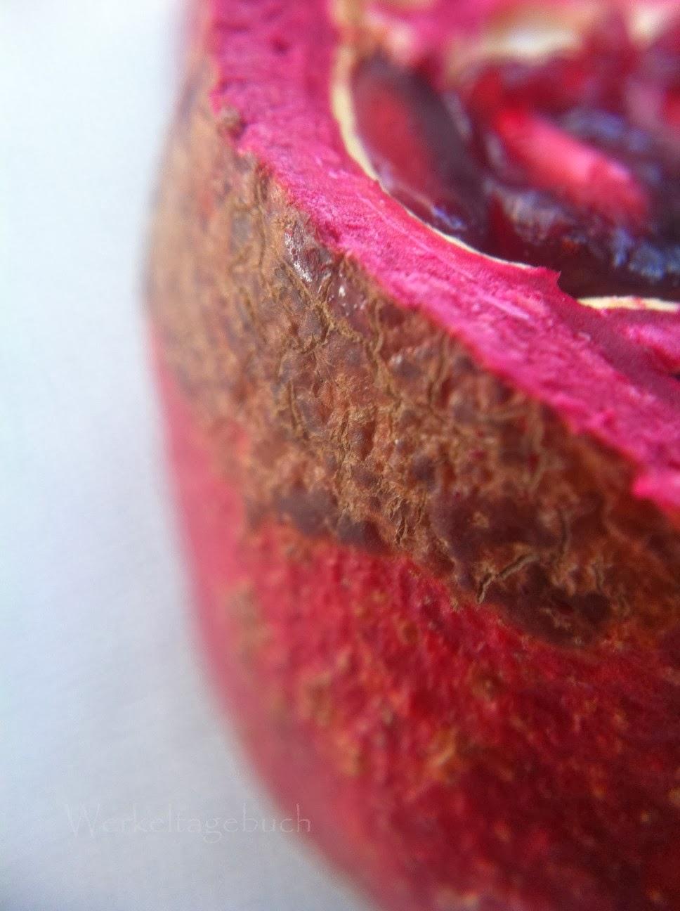 Macro Pomegranate Macrophotography