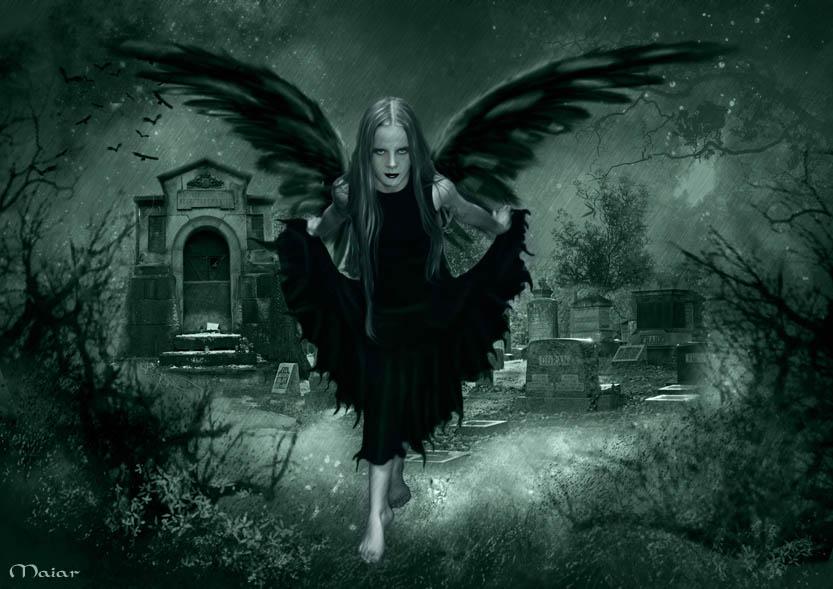 Dark Fairy Wallpaper