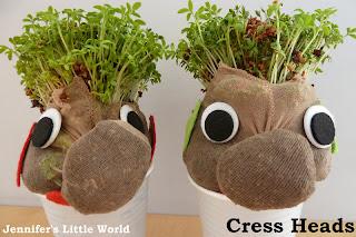 How to make cress heads