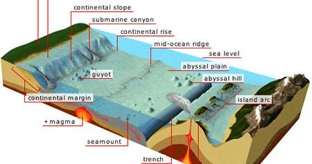 Water World  Geology of the Ocean Floor