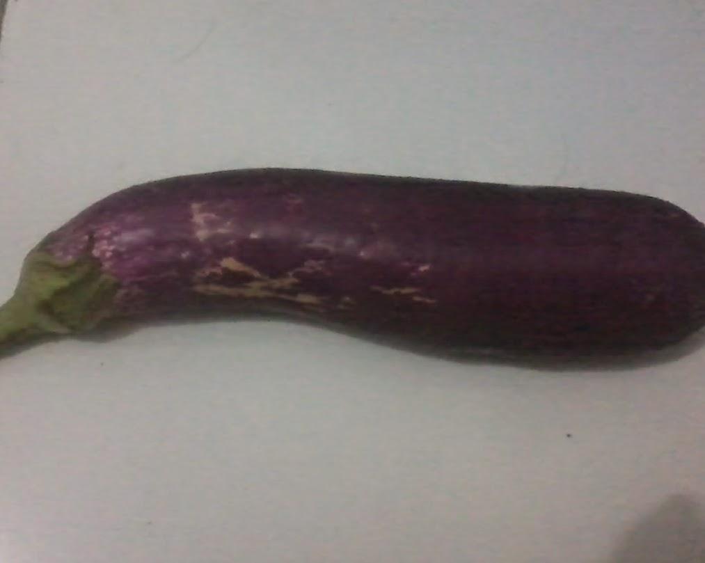 Manfaat dan khasiat mengkonsumsi buah terong ungu
