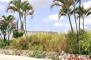 El Faro a Colón ya no ilumina la capital: malezas y basuras afean sus jardines