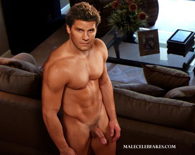 From David boreanaz naked fakes will