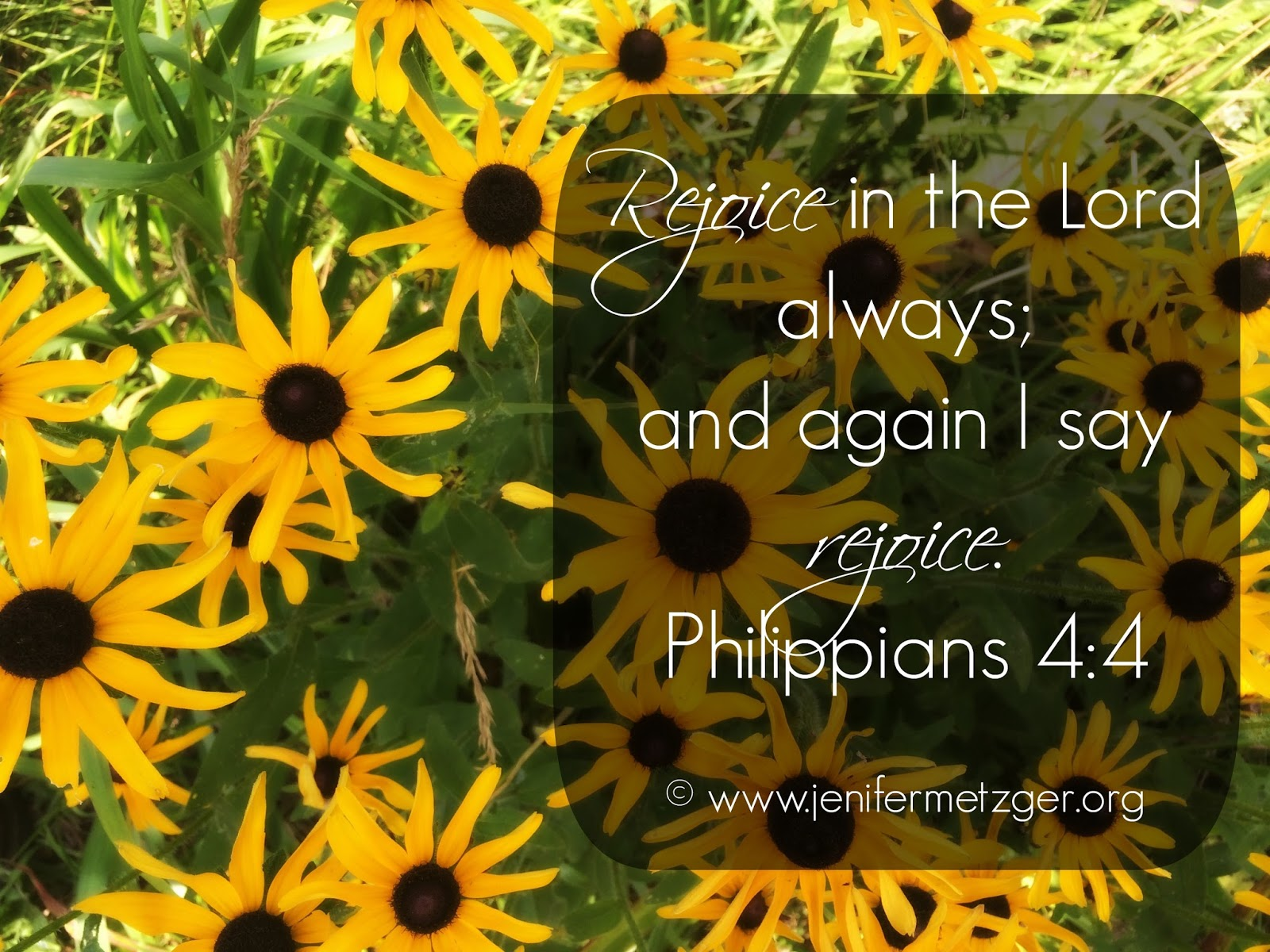 #rejoice in the #Lord always and again I say #rejoice. #philippians 4:4
