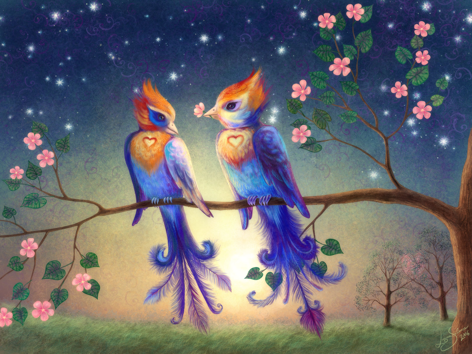 beautiful wallpapers and images beautifull love bird