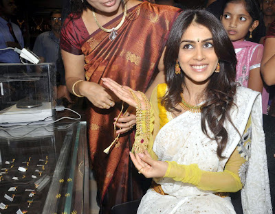 Actress Genelia In White Saree Photos Gallery