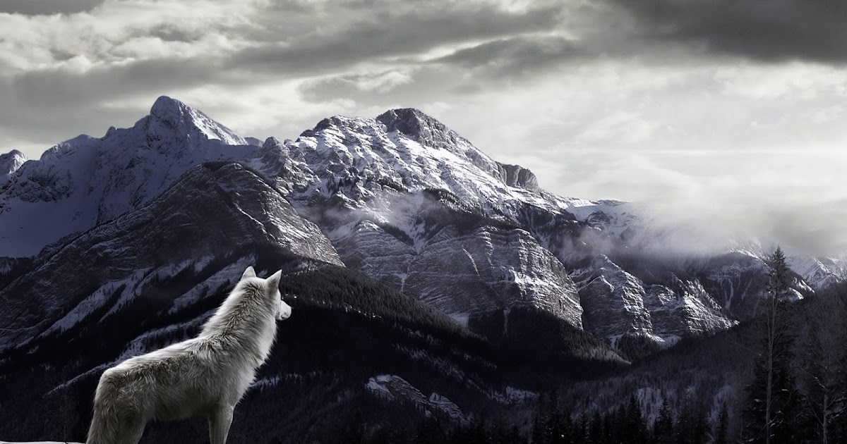 covered mountain 1920x1200 hd - photo #20